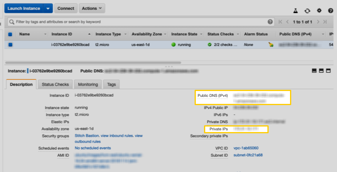EC2 Description tab with highlighted Public DNS (IPv4) and Private IPs fields highlighted